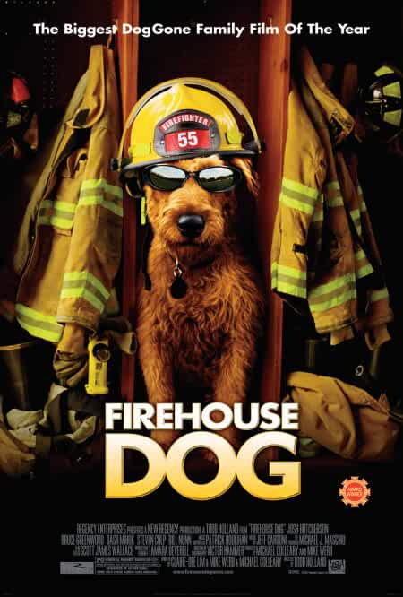 Firehouse Dog 2007 Movies Watch on Amazon Prime Video