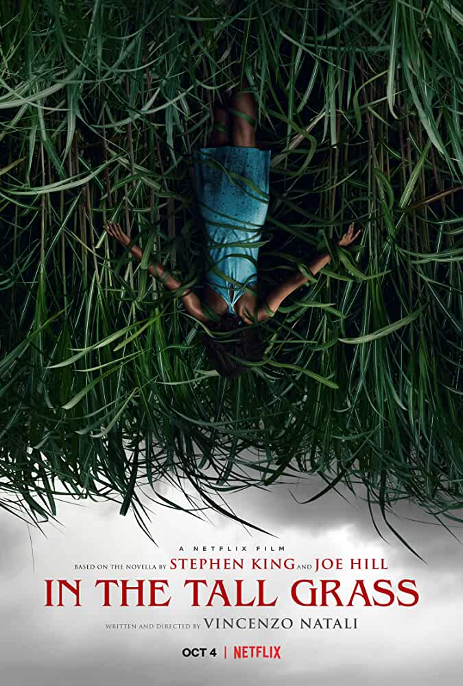 In the Tall Grass 2019 Movies Watch on Netflix
