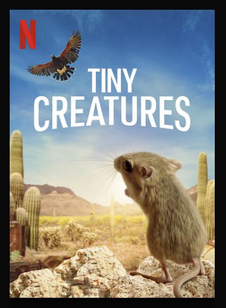 Tiny Creatures 2020 Web/TV Series Watch on Netflix