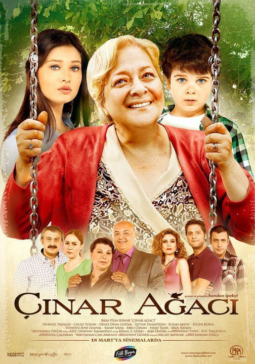 Cinar Agaci 2011 Movies Watch on Netflix