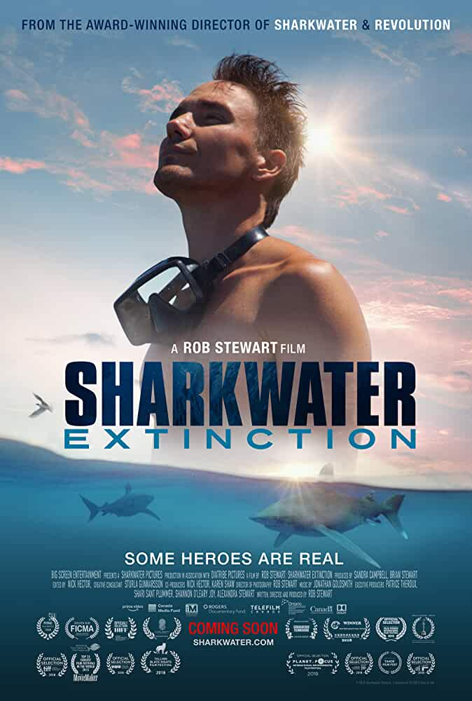 Sharkwater Extinction 2019 Movies Watch on Amazon Prime Video