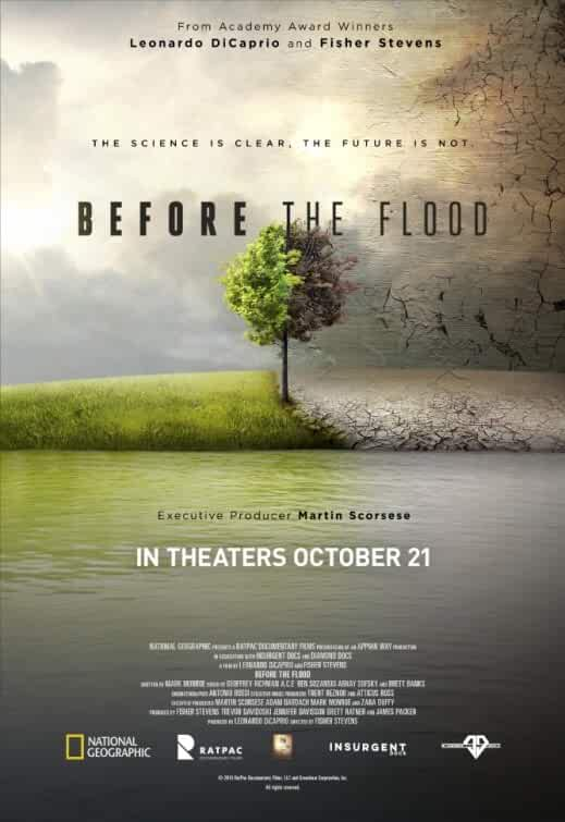 Before the Flood 2016 Movies Watch on Disney + HotStar